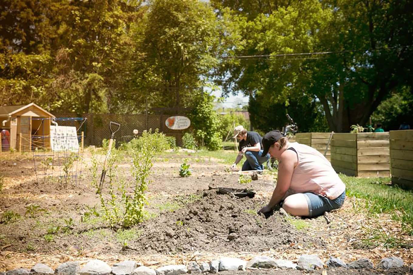 people planting a community garden plot