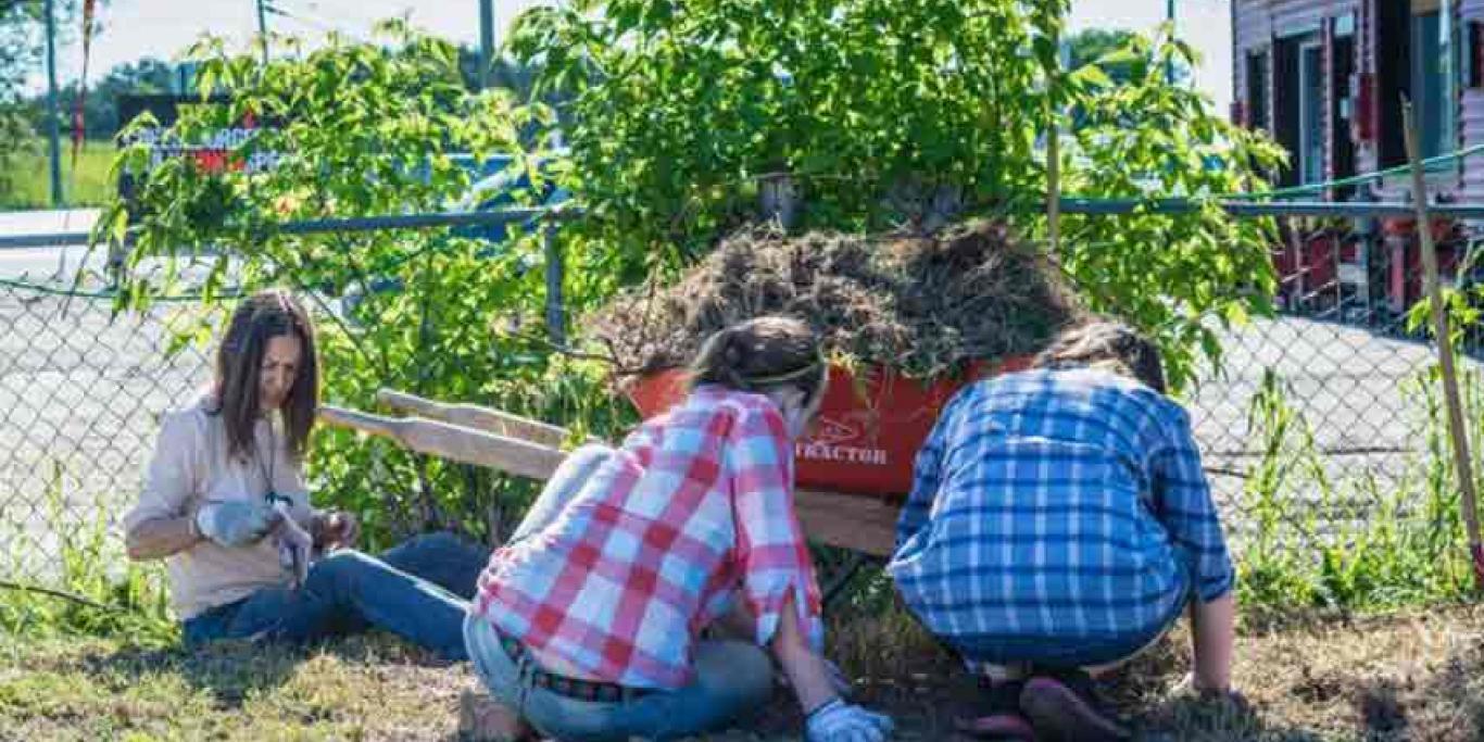 Nourish Havelock community gardeners preparing site