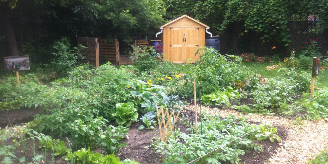 stewart st plots