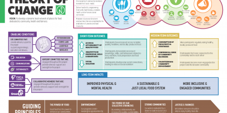 Nourish Project Theory of Change