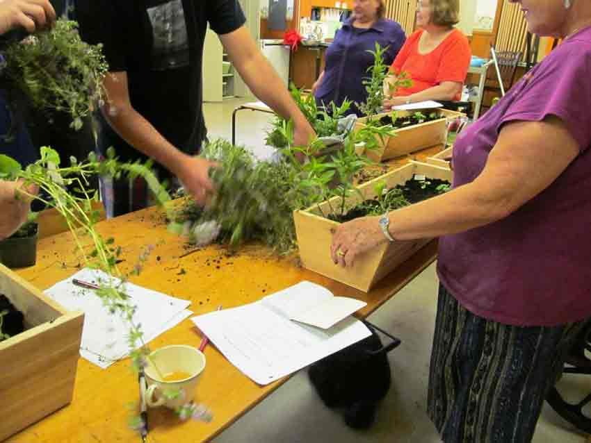 Building window box herb planters a Nourish Grow workshop