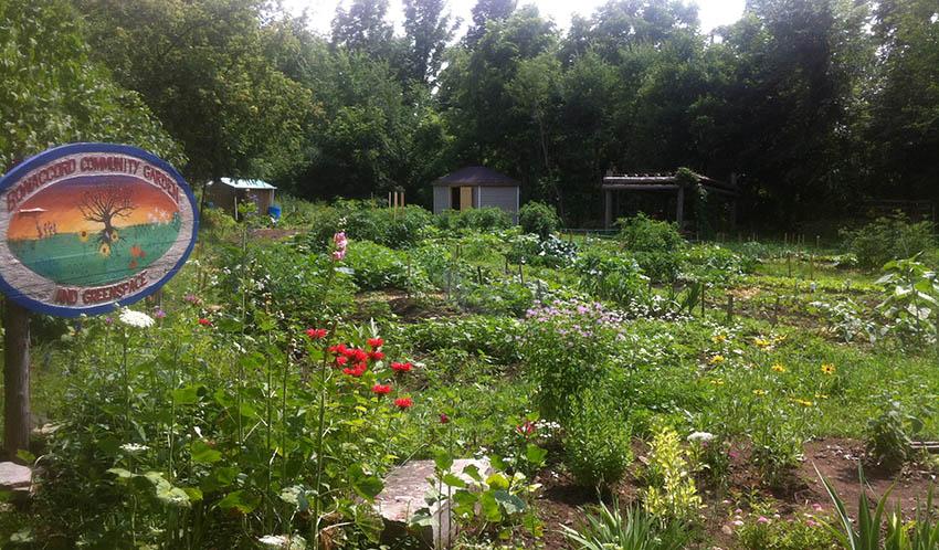 garden header