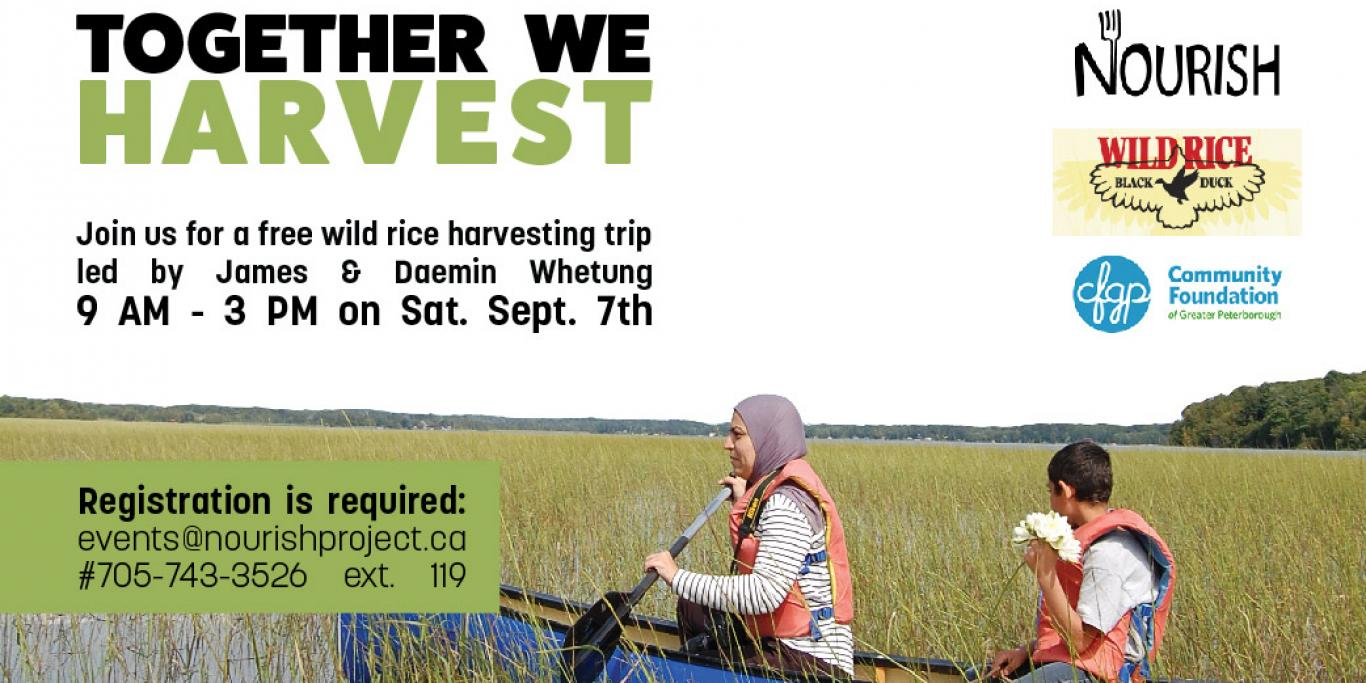 Together We Harvest: Wild Rice Harvesting Trip