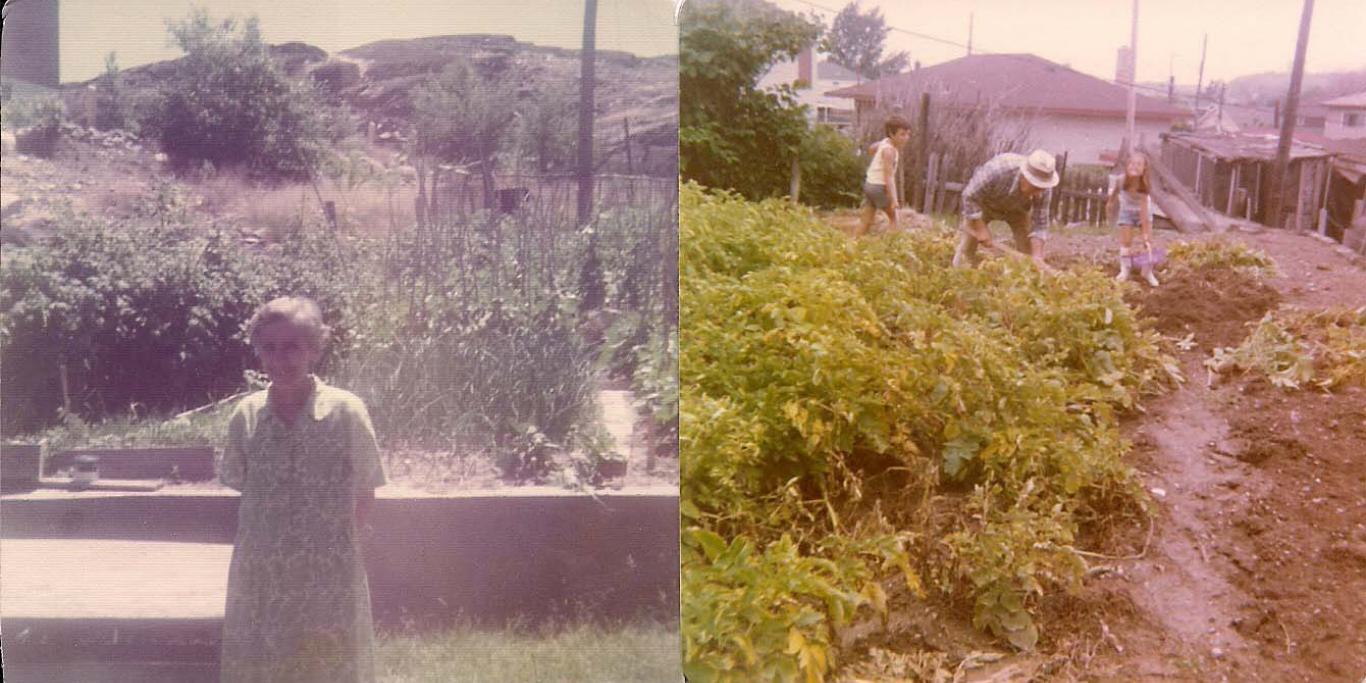 Italia's Family Garden Pictures