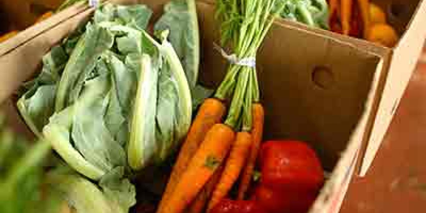 JustFood Fresh Produce Box with carrots, cabbage, peppers, and citrus fruits.