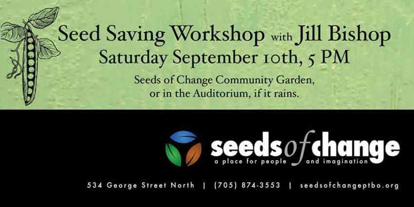 SeedsofChangeWorkshop