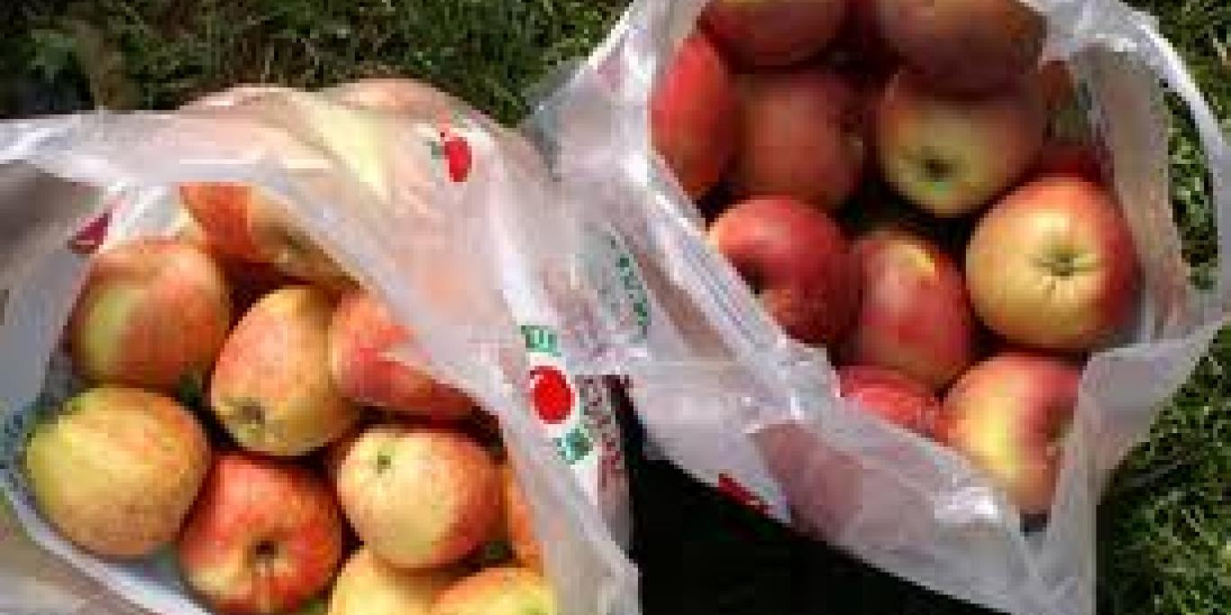 bags of apples